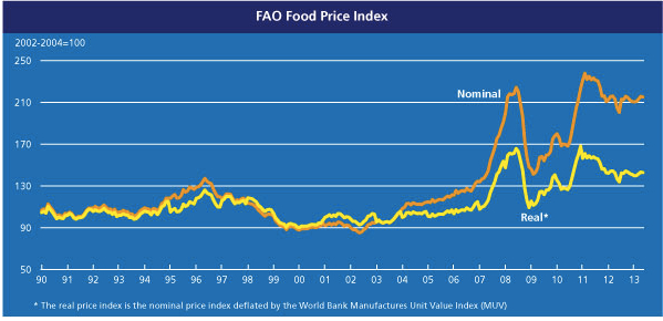 fao-food-price-index-june-2013-jpeg