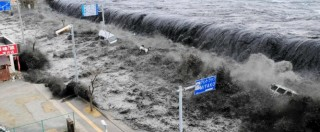 """Fukushima, """"cinque anni dopo mutazioni negli alberi e coste contaminate"""". Il costo del disastro stimato in 110 miliardi"""