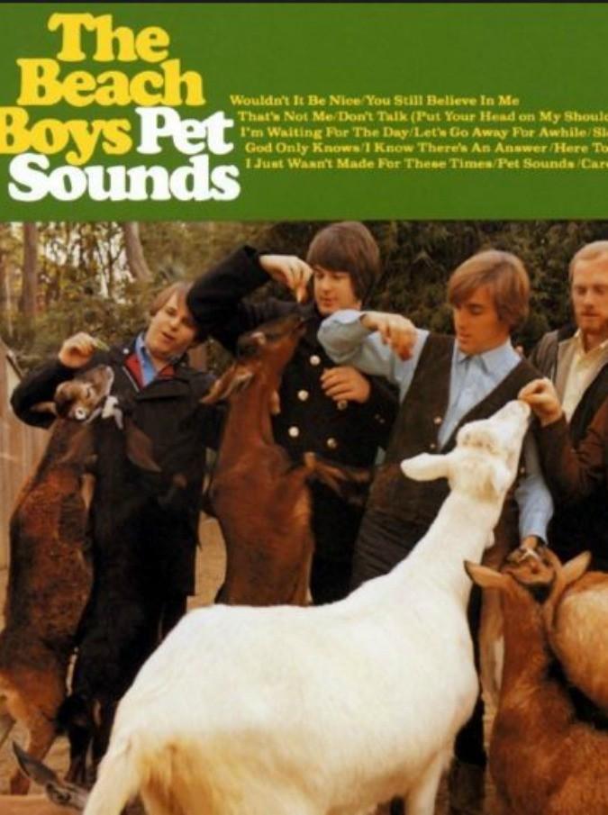 Beach Boys, 50 anni fa usciva Pet Sounds: un vero e proprio album solista di Brian Wilson, un capolavoro che non sente lo scorrere del tempo
