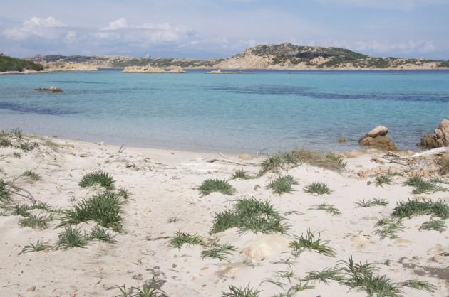 Budelli_spiaggia del cavaliere