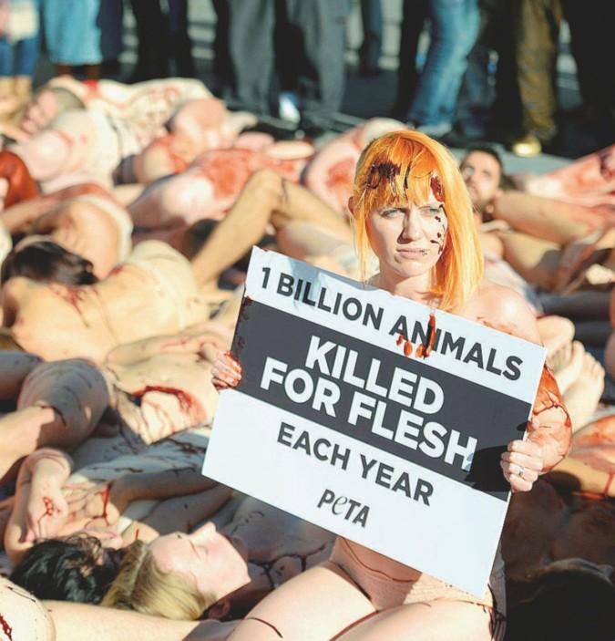 Guerra del cibo: salami contro i vegani, per i jihadisti del tofu