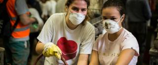 """Festival italiano volontariato, identikit dei 6,6 milioni impegnati per il prossimo. """"Benestanti e per il 30% laureati"""""""