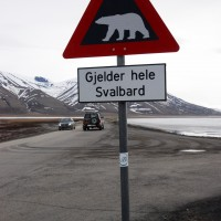 """""""Attenzione, orsi in tutte le Svalbard"""", segnala il cartello"""