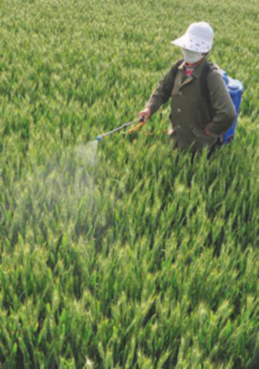 Pesticidi, il 64% delle acque di laghi e fiumi è contaminata