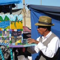 Un venditore di canarini
