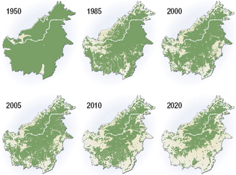 deforestazione-indonesia-mappa