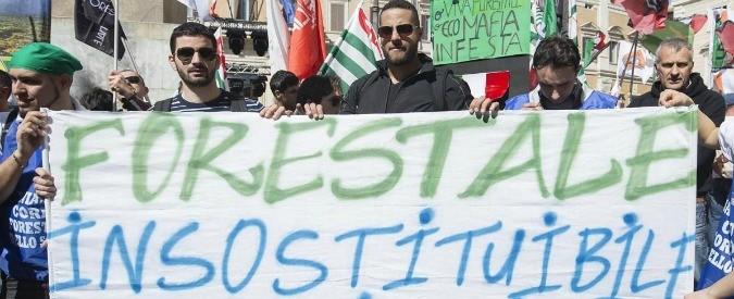 Legge Madia: se il carabiniere-volpe controlla il pollaio-forestale