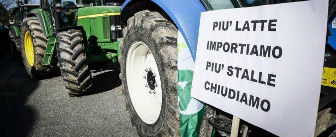 """Giornata del latte, Italia più grande importatore al mondo. Renzi: """"Firmato decreto per tutelare il Made in Italy"""""""