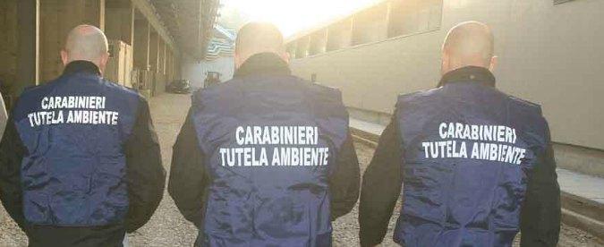 """Rifiuti Napoli,""""stanno scoppiando i mattoni"""". Spazzatura mischiata a materiale edile, 14 arresti"""
