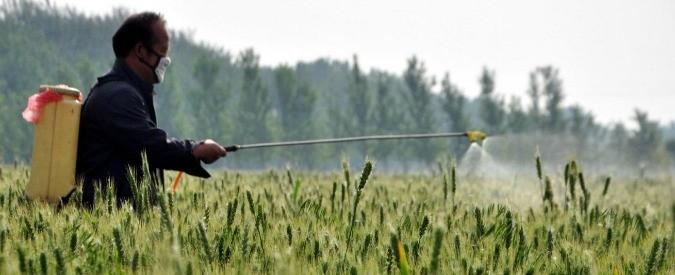 Glifosato e pesticidi, quest'agricoltura ha fatto disastri. Ma si può ancora fare qualcosa