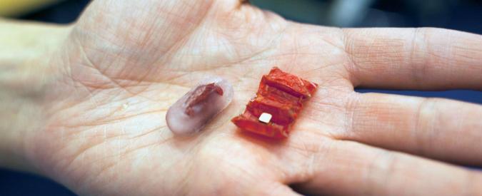"""Ecco il robot origami che s'ingoia come una pillola: """"Può veicolare farmaci e rimuovere corpi estranei"""""""
