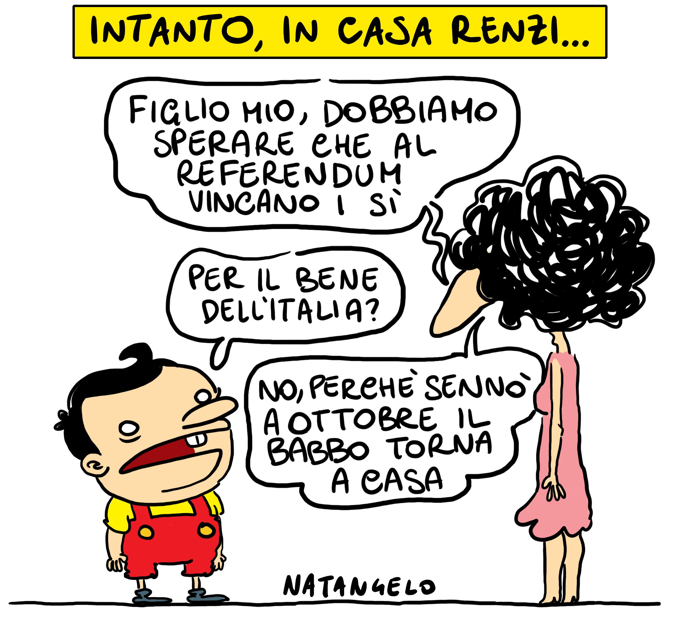 Vado a casa – da il fatto quotidiano – www.natangelo.it # referendum