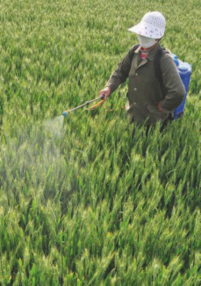 Glifosato, l'Ue ancora divisa sulla proroga all'uso del pesticida