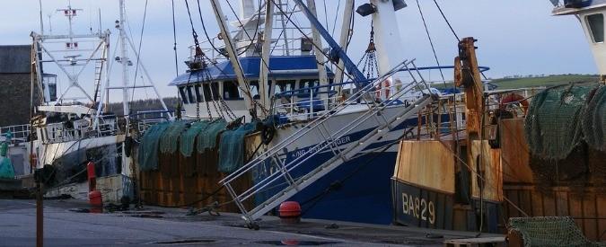 Pesca illegale, arrivano le prime norme che fanno ben sperare
