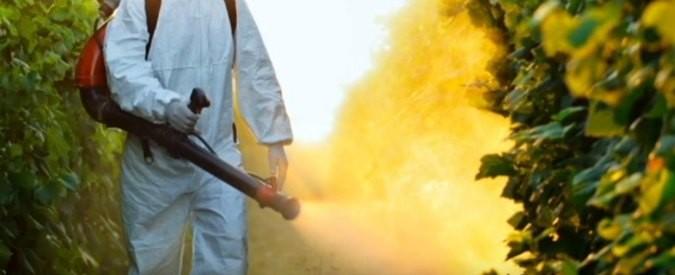 Glifosato, l'Ue vuole rinnovare l'uso del pesticida per altri dieci anni. Ecco perché dobbiamo indignarci