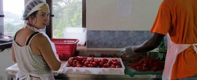 Funky Tomato: il pomodoro italiano di alta qualità e senza caporalato