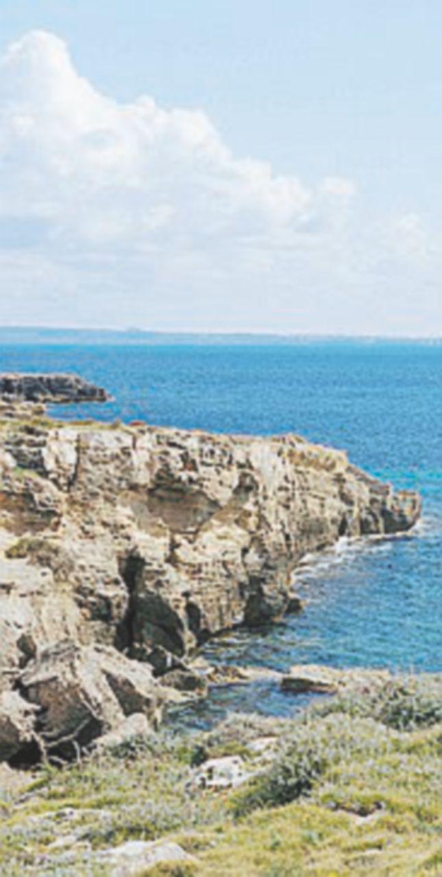 """Favignana, ecco la rivolta verde contro la centrale: """"Salviamo l'isola"""""""