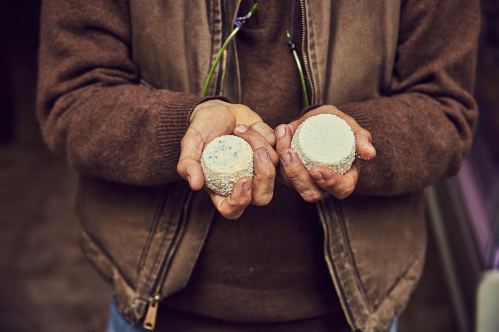 """Solo all'apparenza le muffe possono sembrare cattive. In realtà il """"pennicillum"""" mantiene in vita batteri buoni che migliorano col tempo la qualità del <a href="""