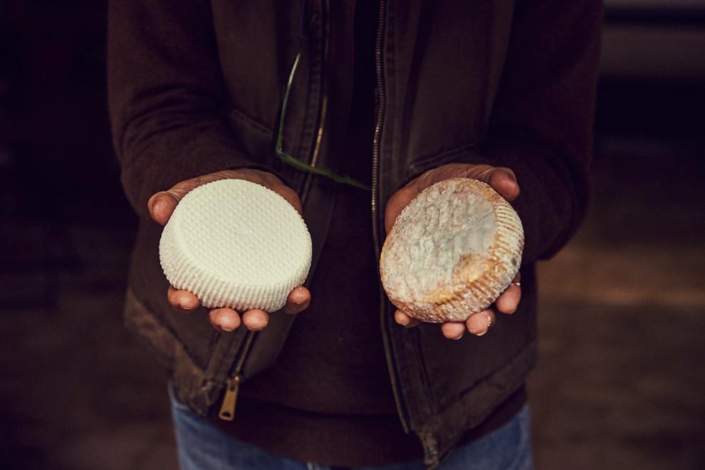 """Il caprino più chiaro è quello che definiamo """"caprino fresco"""". La differenza sta nella quantità di siero che esso contiene. Mettendo più siero si mantiene la freschezza e quindi la leggerezza (al sapore) del formaggio. Il caprino più scuro, invece, ha una stagionatura più lunga e conserva molti più odori e sapori rispetto al primo."""