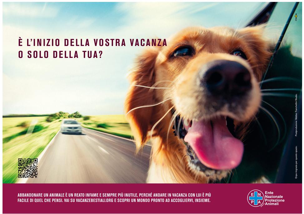 Abbandono Animali Enpa In Piazza Non Solo Cani Ma Destinati Alla