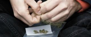 Cannabis, la prima volta del Parlamento: in aula la legalizzazione. Barricate degli alfaniani