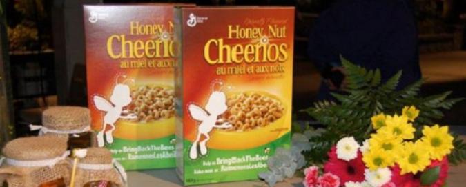 Cheerios in cambio di semi, la campagna pro-api che fa contenti ambientalisti e multinazionali