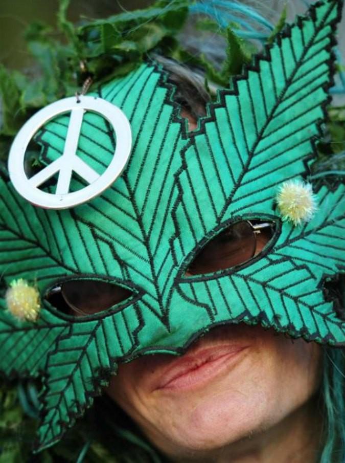 Cannabis, dieci cose che (forse) non sapete