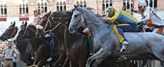 """Palio di Siena, vince la Lupa: era la contrada """"nonna"""", non vinceva dal 1989"""