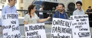 """Cannabis, ddl in Aula. Della Vedova: """"La partita è aperta"""". Il ministro Costa: """"Statalizzare lo spaccio è perverso"""""""