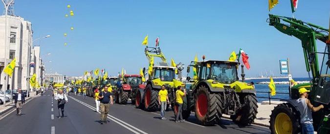 """Guerra del grano, la protesta dei mille trattori per difendere il frumento made in Italy: """"Speculazione da 700 milioni"""""""