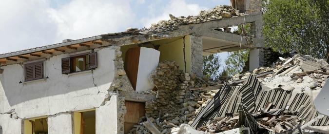 """Terremoto Centro Italia, Coldiretti: """"Emergenza animali: decine morti tra le macerie, altri abbandonati, serve aiuto"""""""