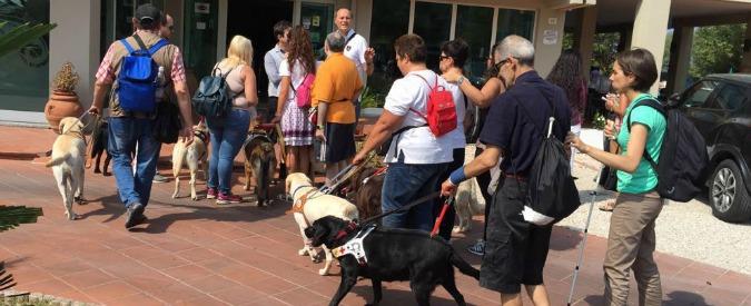 Rimini, chiama i carabinieri perché vuole allontanare i cani guida dei ciechi. Ma multano lui: 883 euro