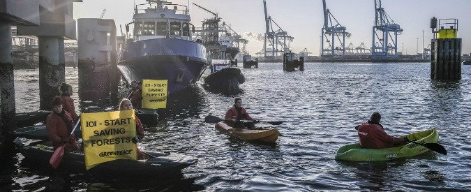 """Greenpeace, continua la lotta contro l'olio di palma: bloccata una nave della IOI a Rotterdam. """"Azienda viola diritti umani"""" (FOTO)"""