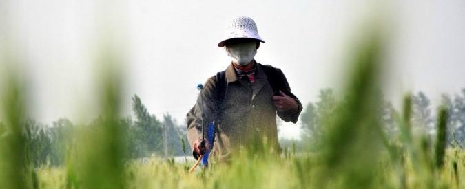Pesticidi, poter avere cibo senza veleni è una questione di democrazia