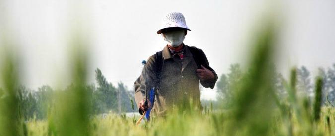 Pesticidi, nuovo piano per ridurli procede nell'ombra mentre 'mancano controlli e dati'. E studio rivela danni del glifosato