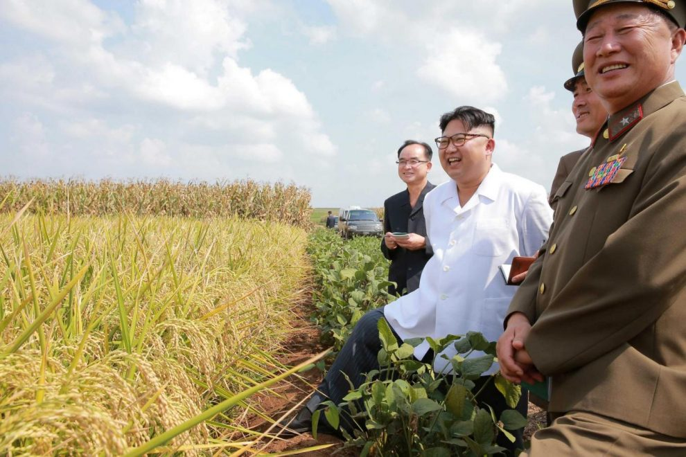 Kim Kardashian incontri miglia Donghae risalente parco Sandara