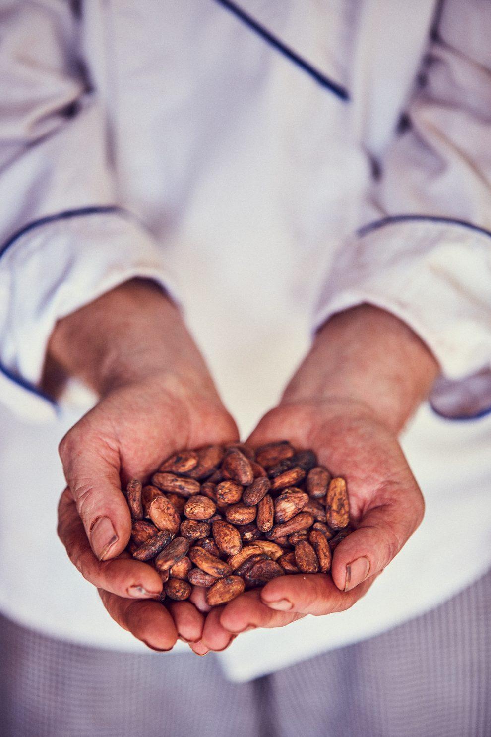 Un segreto per il mio cioccolato? Sta nei semi. È un segreto che proviene da una delle famiglie italo-venezuale più antiche: la famiglia Franceschi. È da loro che faccio arrivare i semi di cacao.