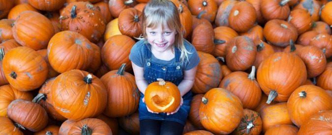 Halloween, la legge del mercato lo prevede. E noi come polli becchiamo