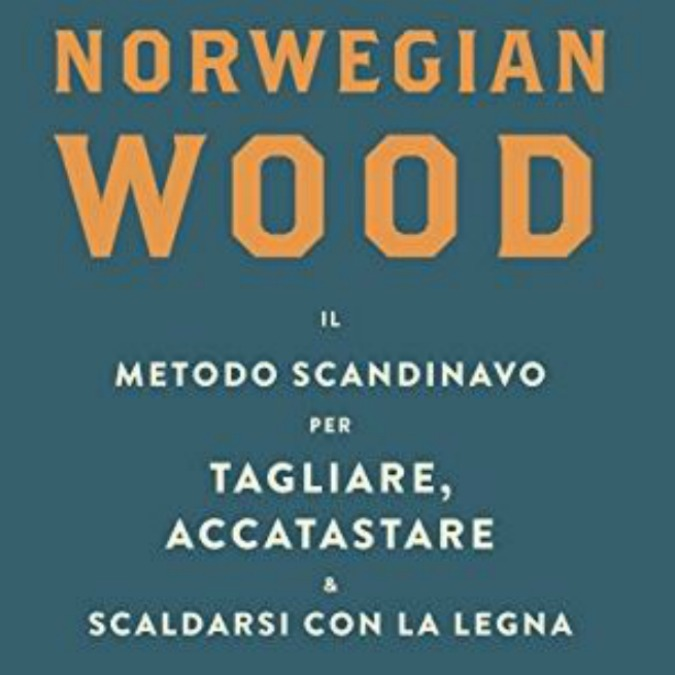 """PerchĂŠ imparare """"il metodo scandinavo per tagliare, accatastare e scaldarsi con la legna"""" è cosa buona e giusta"""