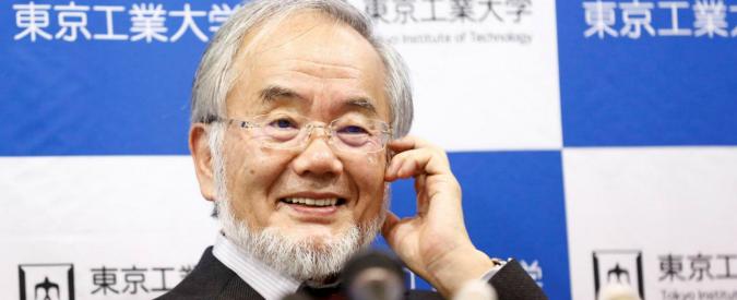 Premio Nobel medicina al biologo Yoshinori Ohsumi per studi su autofagia