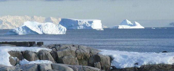 In Antartide la riserva marina più grande al mondo. E l'Italia farà la sua parte