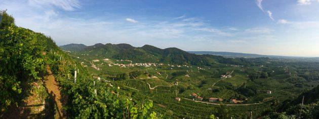 Panorama dalla strada Mont di Cartizze