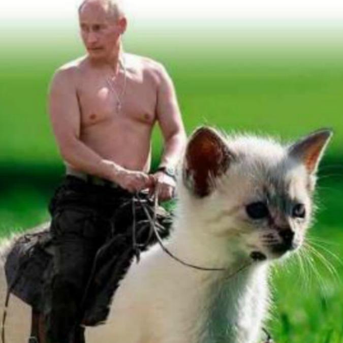 Putin, esce il calendario 2017: fotomontaggi ironici sui social