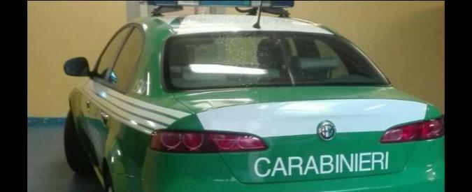 Le auto dei Carabinieri? A gennaio potrebbero diventare verdi