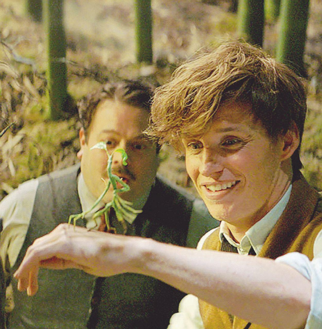 La signora Harry Potter a caccia di doppietta: critica e botteghino