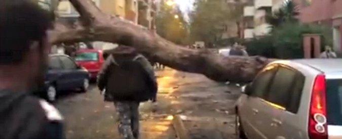 Maltempo, tromba d'aria vicino Roma: due vittime, a Ladispoli e a Cesano
