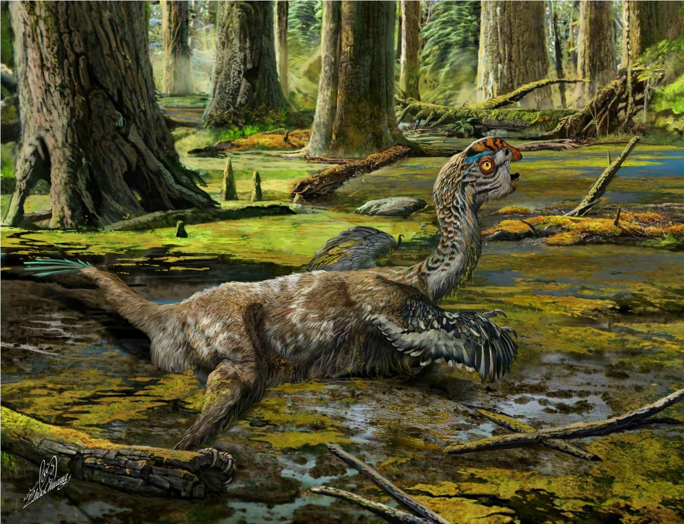 "EMBARGOED TO 1400 THURSDAY NOVEMBER 10Undated handout artist impression issued by University of Edinburgh of how the species of dinosaur Tongtianlong limosus looked like. A dinosaur fossil nicknamed the Mud Dragon has given scientists insight into a family of creatures that flourished just before the mass extinction. PRESS ASSOCIATION Photo. Issue date: Thursday November 10, 2016. The bird-like species was discovered on a Chinese building site, preserved almost intact and lying on its front with its wings and neck outstretched. Scientists speculate that the creature may have died in this pose after becoming mired in mud 66-72 million years ago. They have named the new species Tongtianlong limosus, meaning ""muddy dragon on the road to heaven"". See PA story SCIENCE Dinosaur. Photo credit should read: Zhao Chuang/University of Edinburgh/PA WireNOTE TO EDITORS: This handout photo may only be used in for editorial reporting purposes for the contemporaneous illustration of events, things or the people in the image or facts mentioned in the caption. Reuse of the picture may require further permission from the copyright holder."