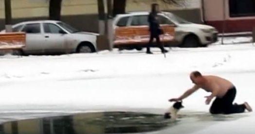 A petto nudo contro il gelo. Come ti salvo il cane intrappolato nel lago ghiacciato
