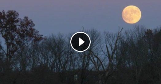 Superluna 2016, sorge negli Stati Uniti. Ecco lo spettacolo che vedremo tra qualche ora