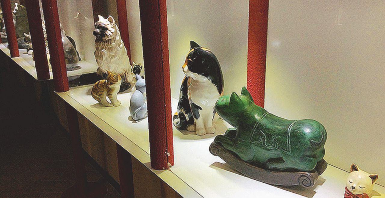 Museo del Gatto: sfida al buonsenso e flop